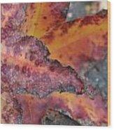 Autumn Wood Print