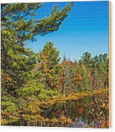 Autumn Lake 4 Wood Print