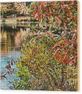 Autumn Lake And Swan Wood Print