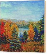 Autumn Landscape Quebec Red Maples And Blue Spruce Trees Wood Print