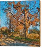 Autumn Lane Mpasto Wood Print