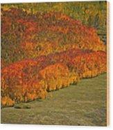 Autumn Lava Flow Wood Print