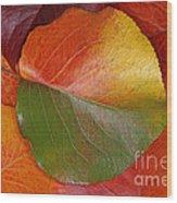 Autumn Leaf Wood Print