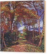 Autumn Leaf Road Wood Print