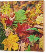 Autumn Leaf Salad Wood Print