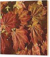 Autumn Leaves 00 Wood Print