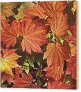 Autumn Leaves 01 Wood Print