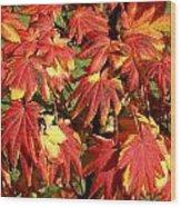 Autumn Leaves 07 Wood Print