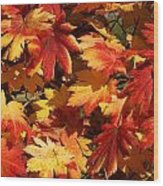 Autumn Leaves 09 Wood Print
