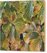 Autumn Leaves 79 Wood Print