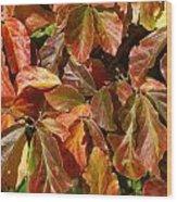 Autumn Leaves 81 Wood Print