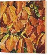 Autumn Leaves 82 Wood Print