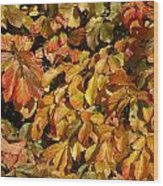 Autumn Leaves 83 Wood Print
