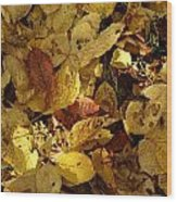 Autumn Leaves 94 Wood Print