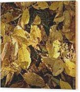 Autumn Leaves 95 Wood Print