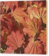 Autumn Leaves 98 Wood Print