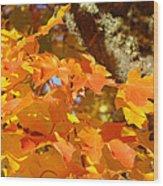 Autumn Leaves Art Print Yellow Orange Wood Print