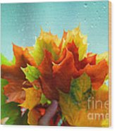 Autumn Leaves Colors Wood Print