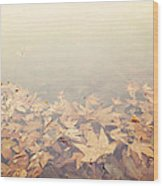 Autumn Leaves Floating In The Fog Wood Print
