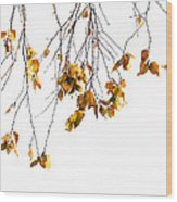 Autumn Leaves Hanging From Branch Wood Print