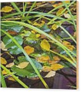 Autumn Leaves In Pond Wood Print
