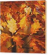 Autumn Leaves Oil Wood Print