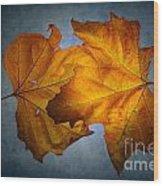 Autumn Leaves On Blue Wood Print