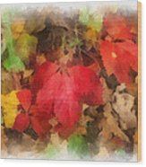 Autumn Leaves Photo Art 04 Wood Print