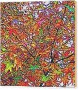 Autumn Leaves Through Filtered Sunlight II Wood Print
