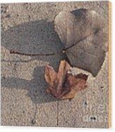 Autumn Leftovers  Wood Print