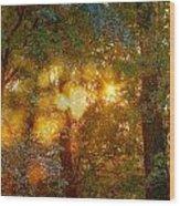 Autumn Light Symphony Wood Print