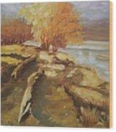 Autumn Light2 Wood Print