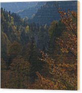 Autumn Magic - Austria Wood Print