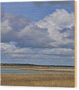 Autumn Marsh At Shell Island Wood Print