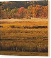 Autumn Marsh Wood Print