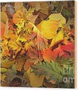 Autumn Masquerade Wood Print by Martin Howard