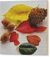 Autumn Medley Wood Print by Jeff Kolker