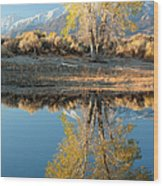Autumn Mirrored Wood Print