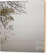 Autumn Mist Wood Print