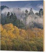 Autumn Mists Wood Print