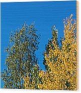 Autumn Mix - Featured 3 Wood Print