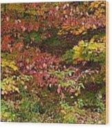 Autumn Mix Wood Print