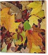 Autumn Moods 19 Wood Print