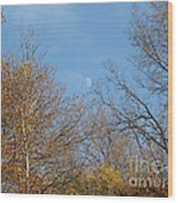 Autumn Moonrise Wood Print