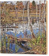 Autumn Morning At The Marsh Wood Print