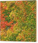Autumn Mosaic Nj Wood Print