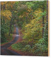 Autumn Mountain Road Wood Print by William Schmid