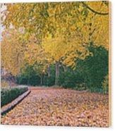 Autumn - New York City - Fort Tryon Park Wood Print