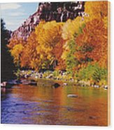 Autumn Oak Creek  Wood Print