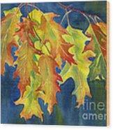 Autumn Oak Leaves  On Dark Blue Background Wood Print by Sharon Freeman